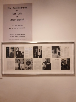 Excerpts from The Autobiography and Sex Life of Andy Warhol.
